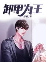 卸甲为王_目录|最新章节_作者:好猫by陈飞乔雅